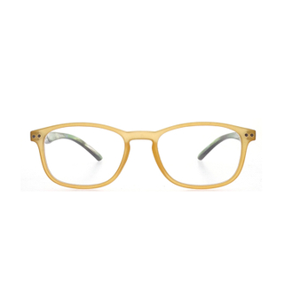 Wholesale translucent color frame eye glasses frames LR-P5855