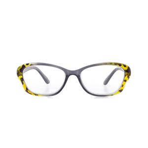 High-quality New Fashion Plastic Reading Glasses Blue Light Blocking Glasses LR-P6571